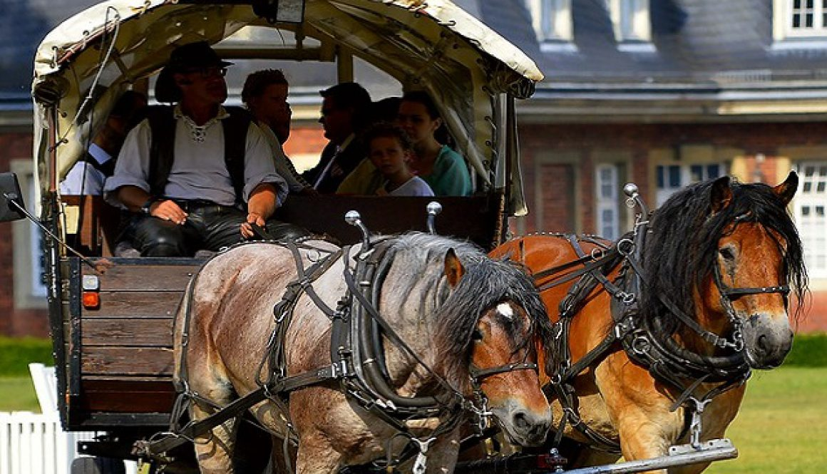 Binomials: word pairs, such as horse and carriage